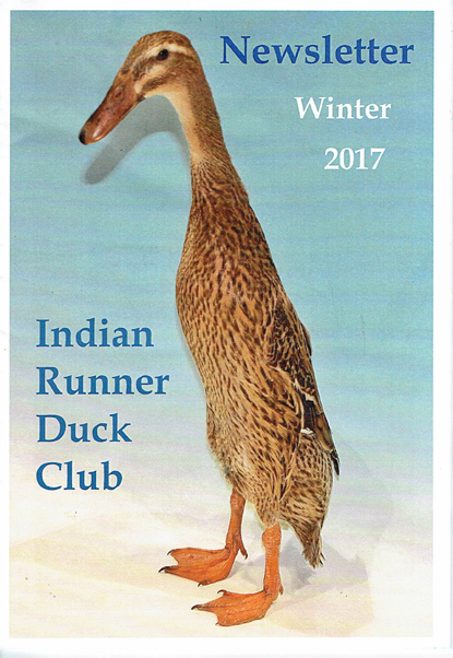 Cover of Winter Newsletter
